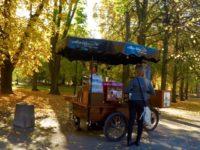 ワルシャワの公園 コーヒースタンド