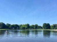 Pole Mokotowskieの池